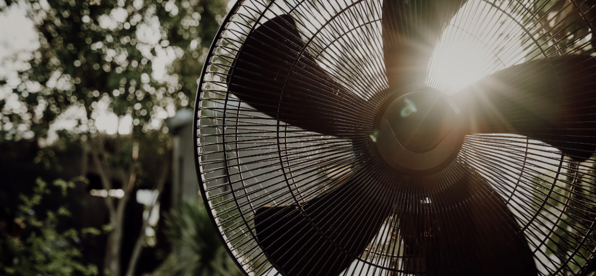 3 types of fans that are perfect for your home